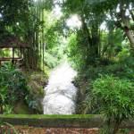 Tao-Garden-Stream
